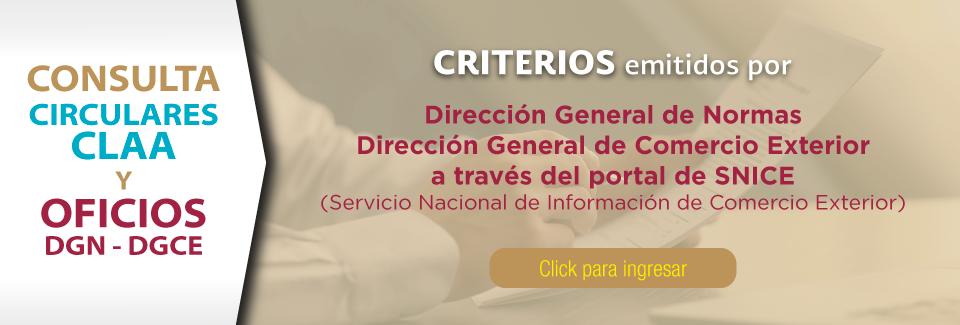Criterios emitidos por la DGN-DGCE a través del portal SNICE